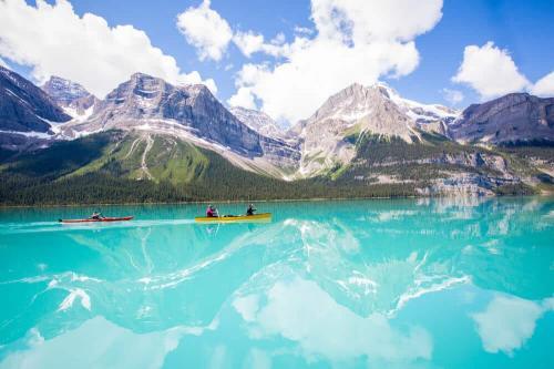 Картинки по запросу Jasper National Park. Canada