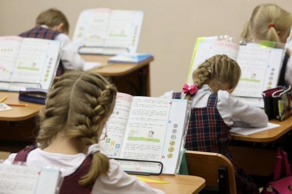 В Госдуме выступили за разнообразие школьной формы