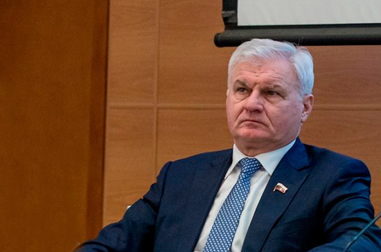 Плотников разъяснил проект о распространении патентной системы налогообложения на животноводство