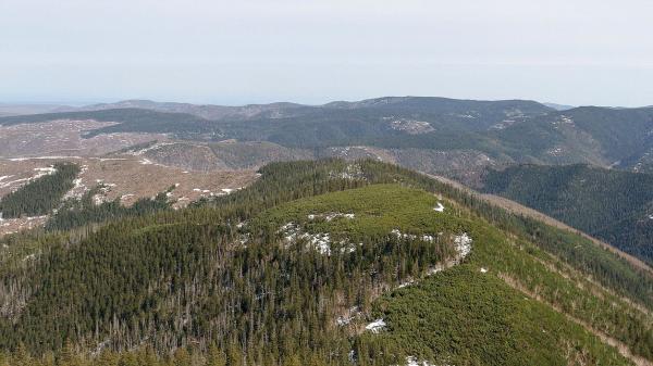 природа дальний восток горы лес